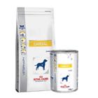 Royal Canin Cardiac - erikoisravinnot
